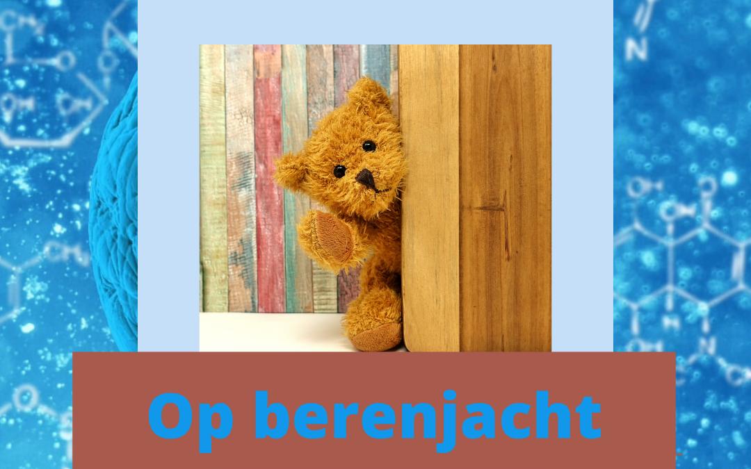 Berenjacht in Nederland